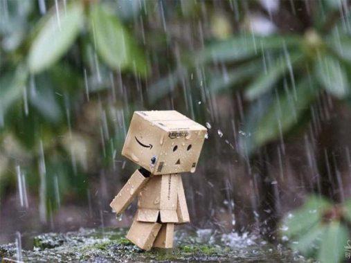 Chiêm bao thấy cơn mưa mang đến con số đề bí ẩn nào